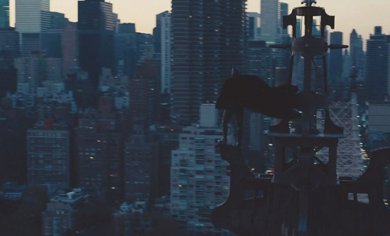 Batman Surveys Gotham